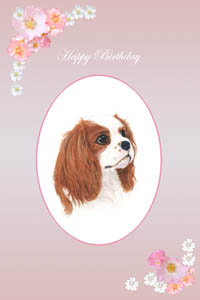 Cavalier King Charles Spaniels Greeting Cards and pet portraits