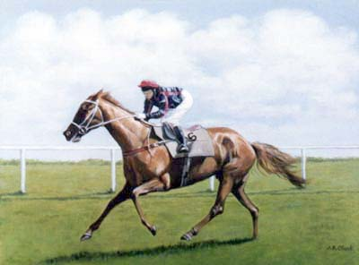Pet Portraits - Horse and Pony Paintings from Your Favourite Photos - Race Horse in Oils