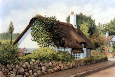 Pet Portraits - Animal Portraits from Photos of Your Favourite Scene - Thatched Cottage, Leek Wootton in Oils