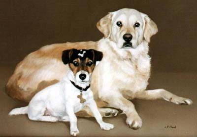 Dog Portraits Golden Retriever and Jack Russell Terrier Painting    Yellow Lab Jack Russell Mix